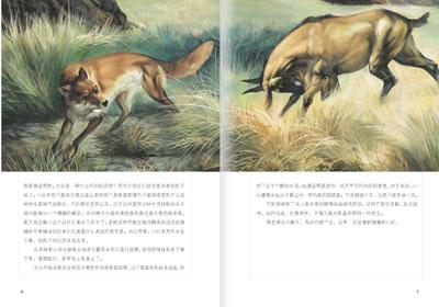 沈石溪动物文学精选系列(6册)