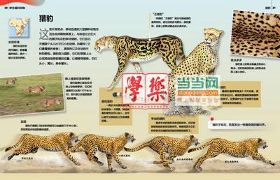 野生猫科动物》(小学《科学》课拓展阅读辅助教材 国际科学教育学会
