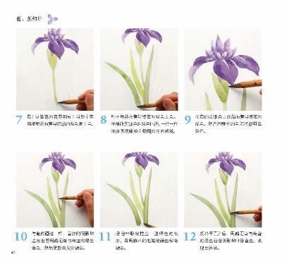 步骤,还提供了彩图明信片的制作方法和花卉图例的线