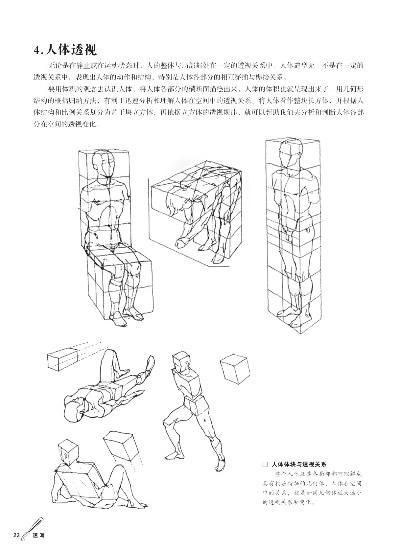 骨骼与肌肉  3.人体重心